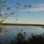 Nace el Colaboratorio de Biodiversidad, Ecología y Conservación