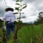 El peligro de defender derechos en América Latina